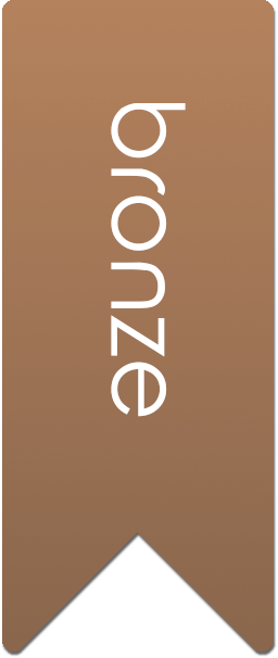 Bronze Audioxide review ribbon