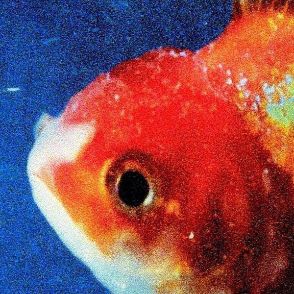 Album artwork of 'Big Fish Theory' by Vince Staples